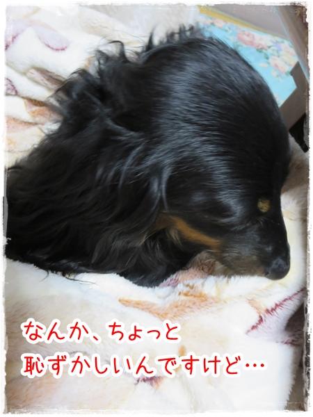 IMG_0425_2.jpg