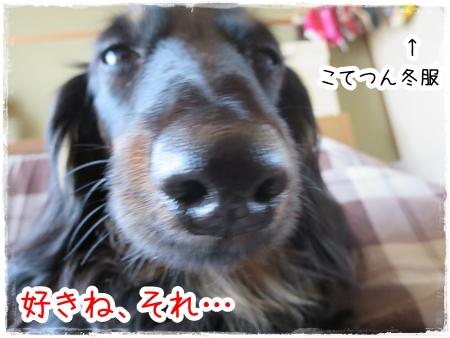 IMG_0427_2.jpg