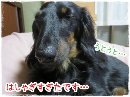 IMG_0429_6.jpg