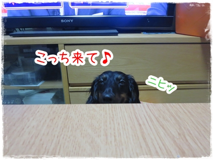 IMG_0531_5.jpg