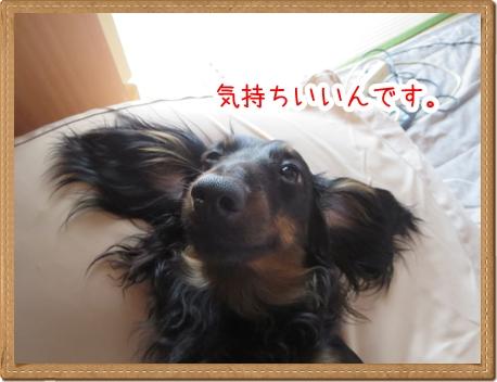 IMG_0615_5.jpg
