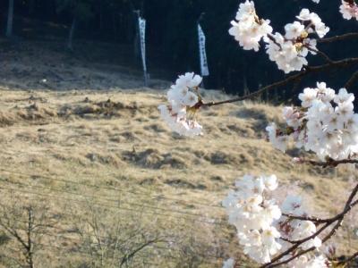 2014年4月12日 火とぼし山①