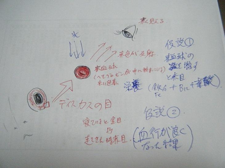 20140623-赤目の仮説