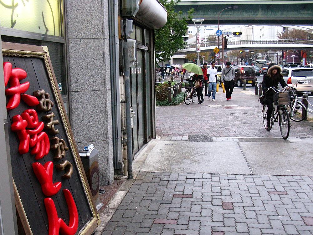 2011_11_23 041