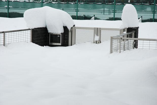 雪の日0201