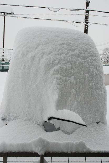 雪の日0202