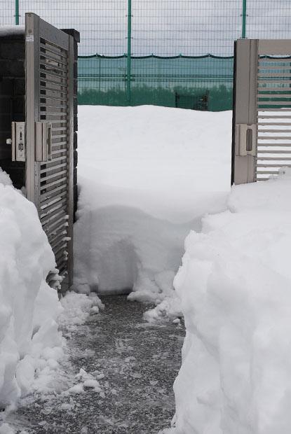 雪の日0203