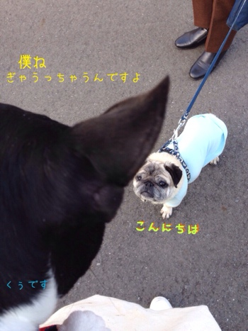 fc2blog_2014030710031744a.jpg