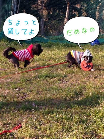 fc2blog_20140316075147f69.jpg