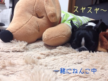 fc2blog_20140407070609ca3.jpg