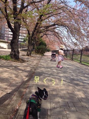 fc2blog_20140412184154618.jpg