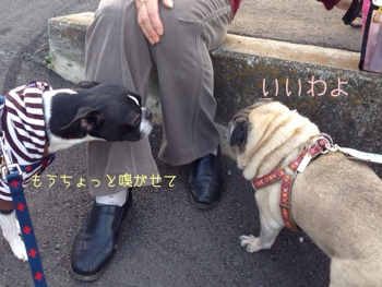 fc2blog_20140414063855c98.jpg
