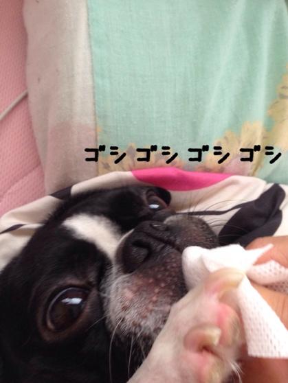 fc2blog_20140627094824fcd.jpg