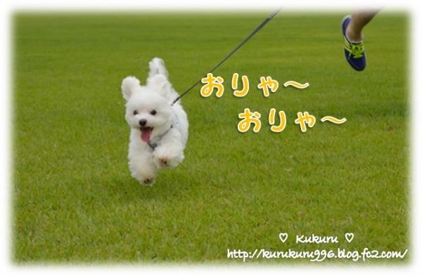 20140818-03.jpg