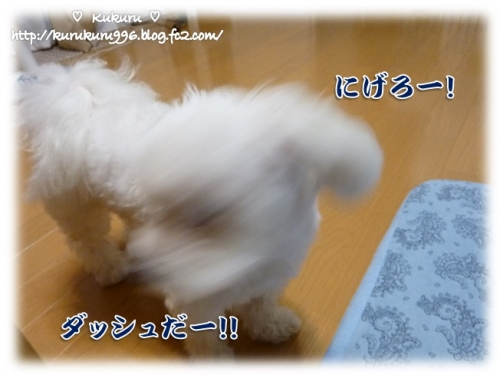 20140929-02.jpg