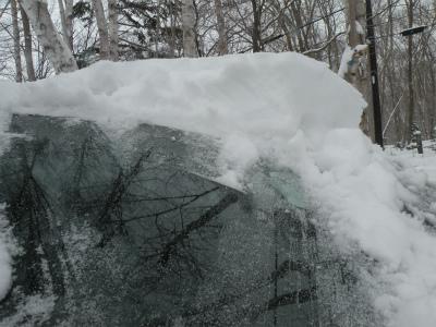 積雪71センチに
