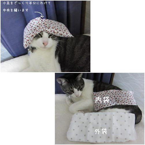 cats袋