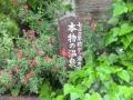 熊入温泉センター9
