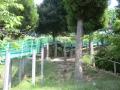 一本松公園2