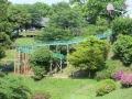 一本松公園3
