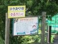 一本松公園4