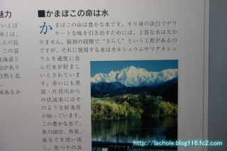 DSC07951.jpg
