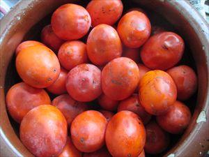 柿酢 (2)_R