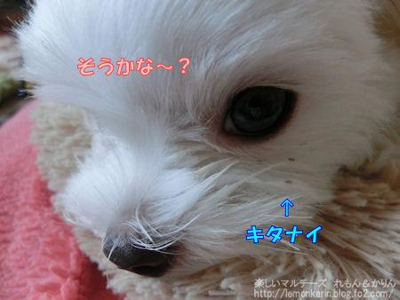 20140622_10.jpg
