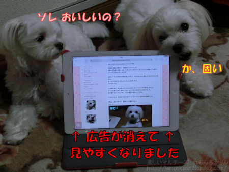 20140622_a_2.jpg