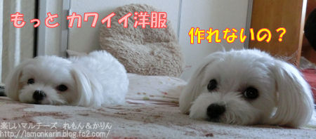 20140628_6.jpg