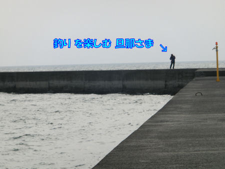 20140629_a3.jpg
