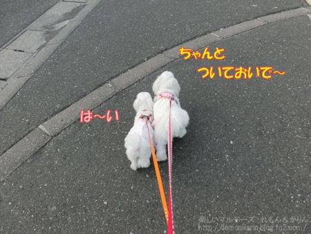 20140629_a5.jpg