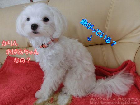 20140630_2.jpg