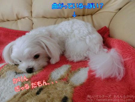 20140630_3.jpg
