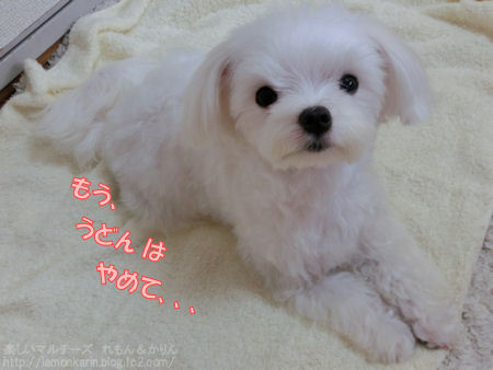 20140702_011.jpg