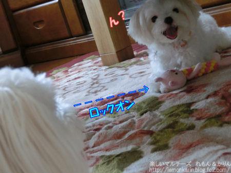 20140704_9.jpg