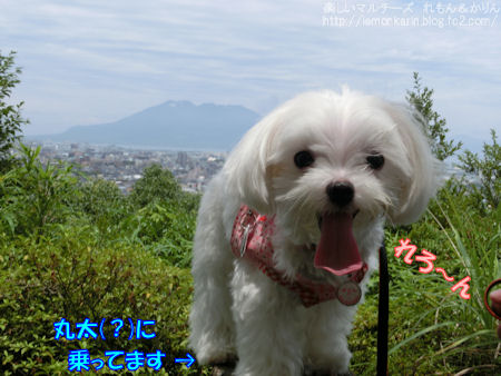 20140707_3.jpg