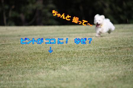 20140710_2.jpg