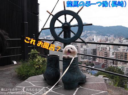 20140718_5.jpg
