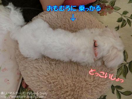 20140719_3.jpg