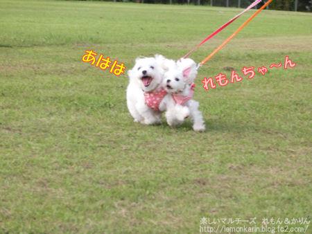 20140721_4.jpg