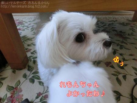 20140725_8.jpg