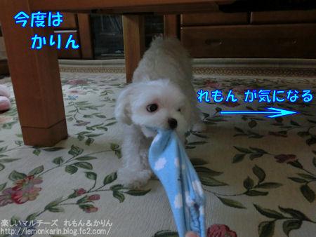 20140730_8.jpg