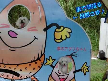 20140811_6.jpg