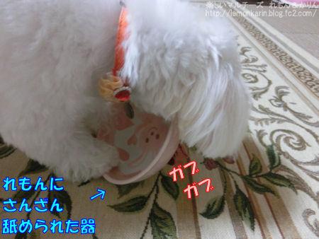 20140821_8.jpg