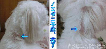 20140826_1.jpg