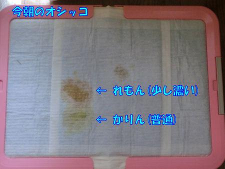 20140827_022.jpg