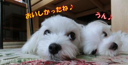 20140828_11.jpg