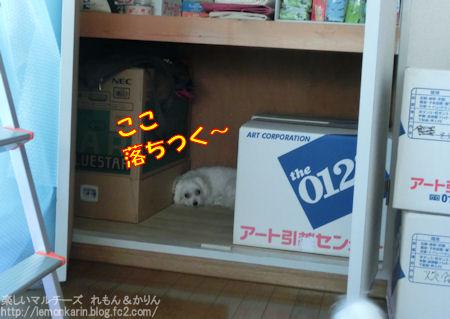 20140909_4.jpg