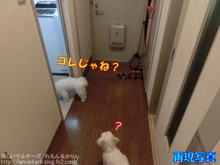 20140910_3.jpg